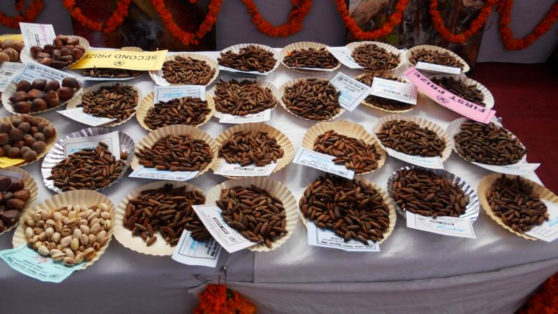 Kinnaur Dry Fruits