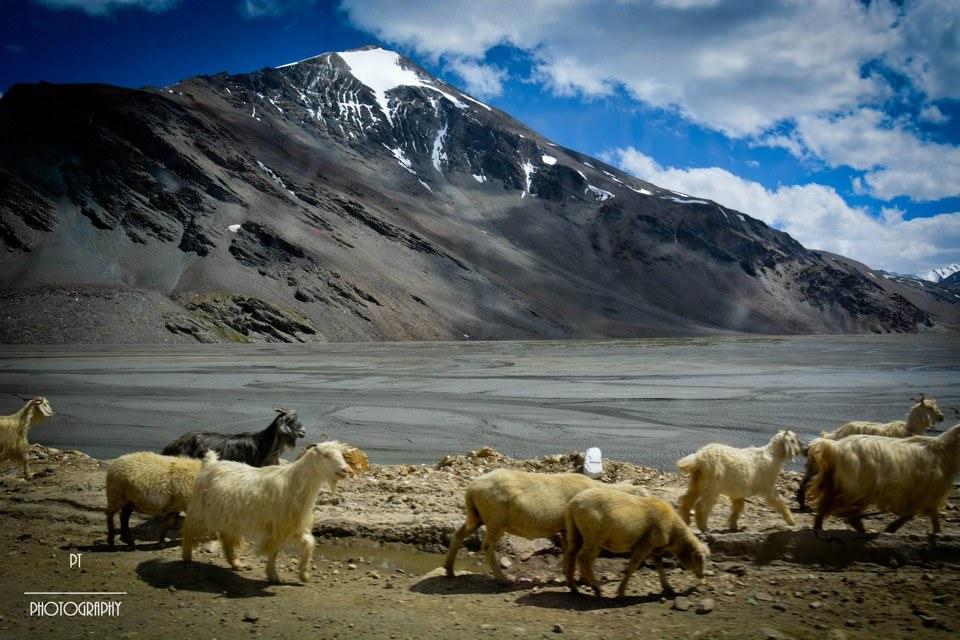 Leh Ladakh bike trip_2
