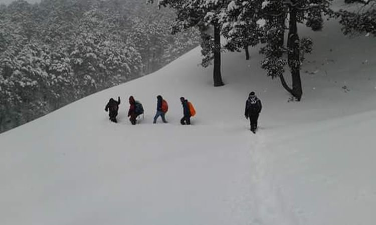 Trekkers at Chanderkhani Pass